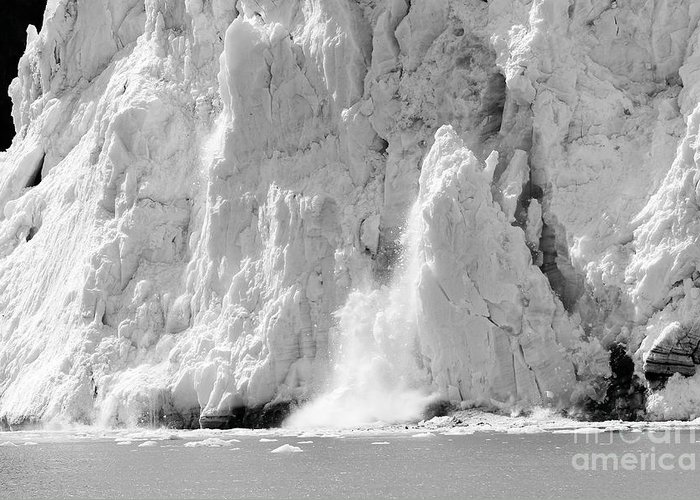 Glacier Greeting Card featuring the photograph Calving Glacier In Black And White by Sophie Vigneault