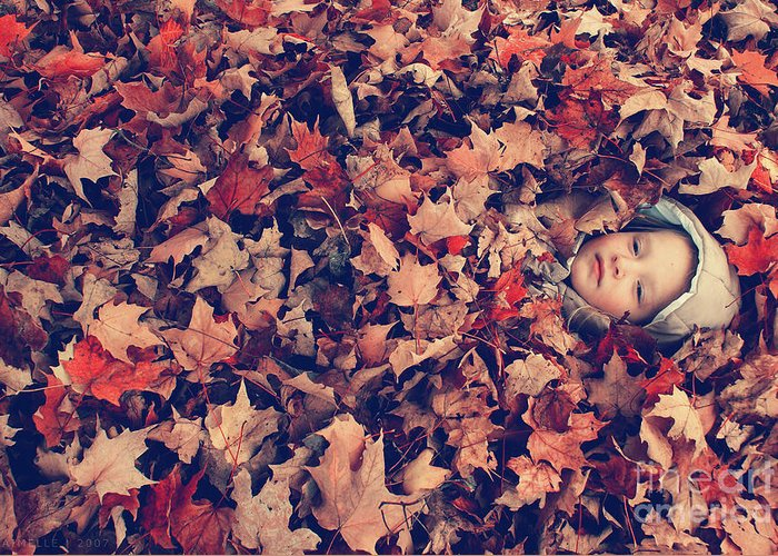 autumn Prints Greeting Card featuring the photograph Camouflage 02 by Aimelle