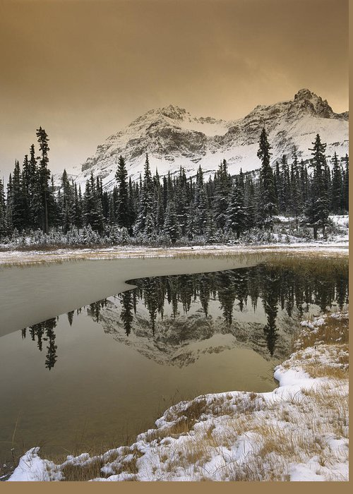 00170867 Greeting Card featuring the photograph Canadian Rocky Mountains Dusted In Snow by Tim Fitzharris