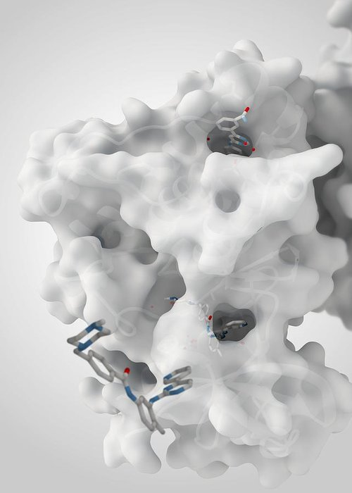 Molecule Greeting Card featuring the photograph Cancer Protein And Drug Complex by Ramon Andrade 3dciencia