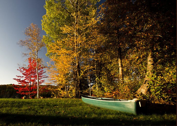 Fall Greeting Card featuring the photograph Canoe by Cale Best