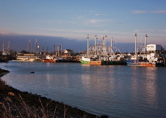 Cape May New Jersey Greeting Card featuring the photograph Cape May Fishing Boats by Tom Singleton