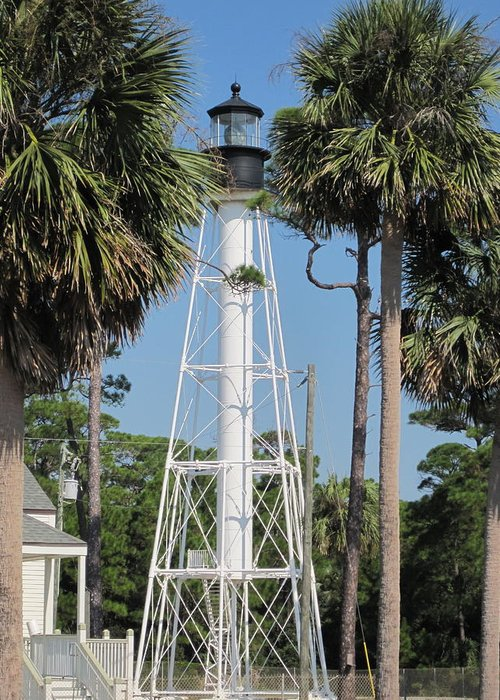 Lighthouse Greeting Card featuring the photograph Cape San Blas Lighthouse by Megan Cohen