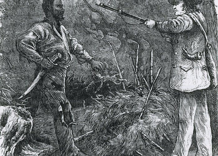 History Greeting Card featuring the photograph Capture Of Nat Turner, American Rebel by Photo Researchers