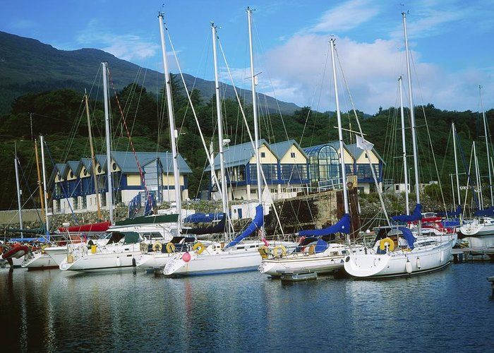 Ireland Greeting Card featuring the photograph Carlingford Marina, Carlingford, County by The Irish Image Collection