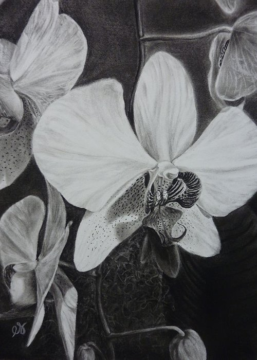 Charcoal Greeting Card featuring the drawing Cascade Of Orchidds by Estephy Sabin Figueroa