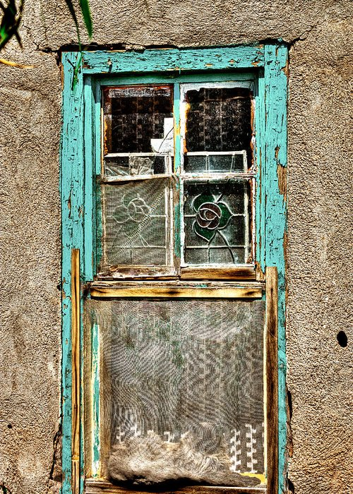 New Mexico Greeting Card featuring the photograph Cat In The Window by David Patterson
