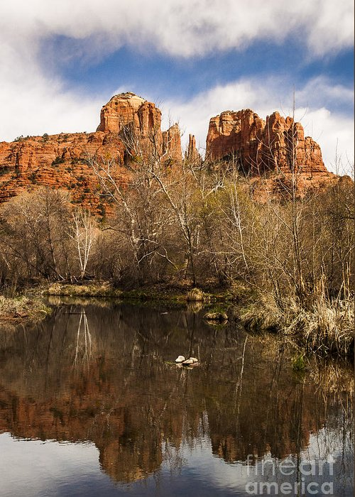 Cathedral Rock Greeting Card featuring the photograph Cathedral Rock Reflections Portrait 1 by Darcy Michaelchuk