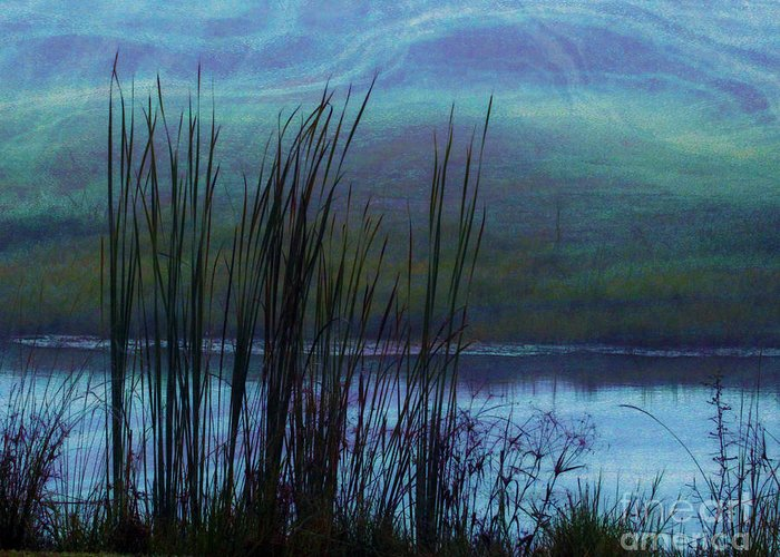 Cattails Greeting Card featuring the photograph Cattails In Mist by Judi Bagwell