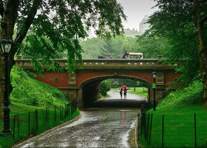 New York Greeting Card featuring the photograph Central Park In The Rain by Greg Norrell