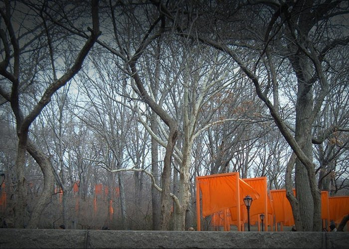New York Greeting Card featuring the photograph Central Park by Naxart Studio