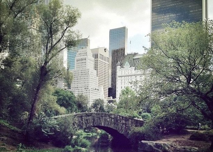 Summer Greeting Card featuring the photograph Central Park by Randy Lemoine