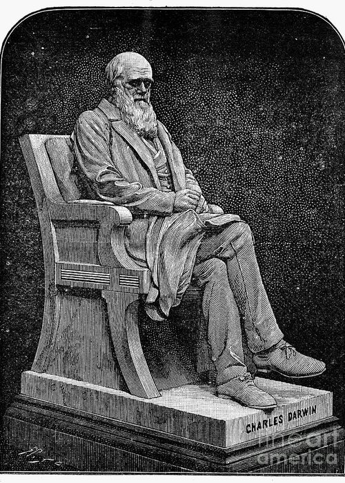 1887 Greeting Card featuring the photograph Charles Darwin (1809-1882) by Granger