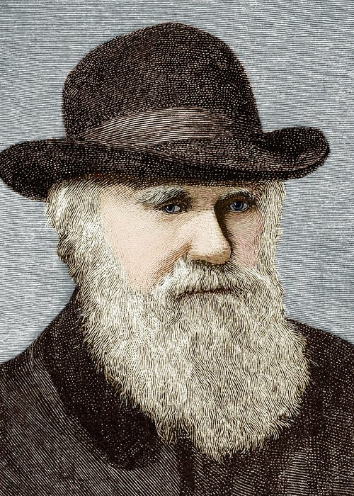 Darwin Greeting Card featuring the photograph Charles Darwin, British Naturalist by Sheila Terry