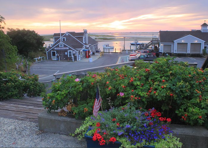 Chatham Greeting Card featuring the photograph Chatham Fish Pier Summer Flowers Cape Cod by John Burk