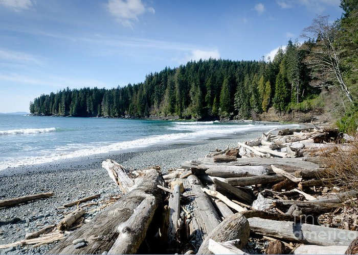 China Beach Greeting Card featuring the photograph China Beach Vancouver Island Juan De Fuca Provincial Park by Andy Smy