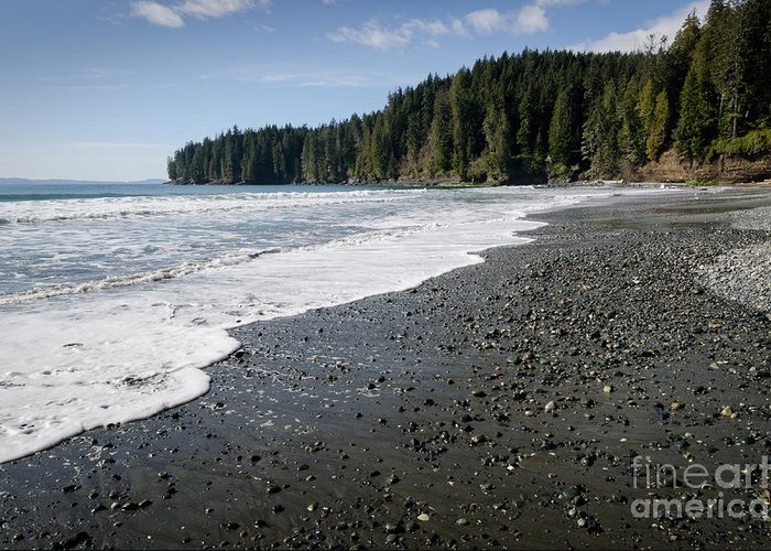 China Beach Greeting Card featuring the photograph China Wave China Beach Juan De Fuca Provincial Park Vancouver Island Bc by Andy Smy