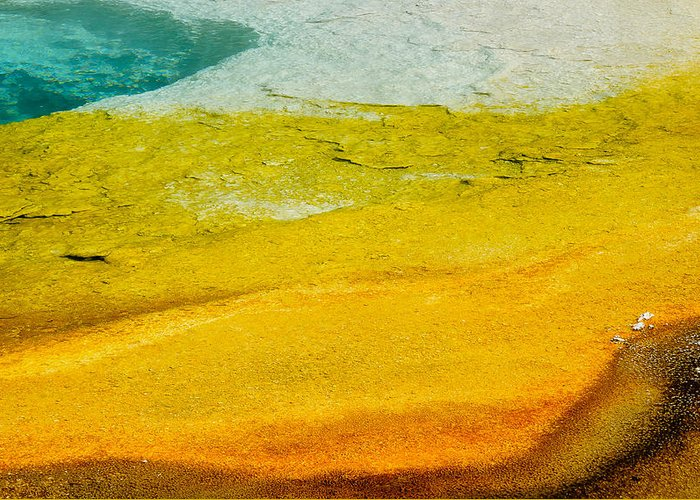 America Greeting Card featuring the photograph Chromatic Pool by Andy-Kim Moeller