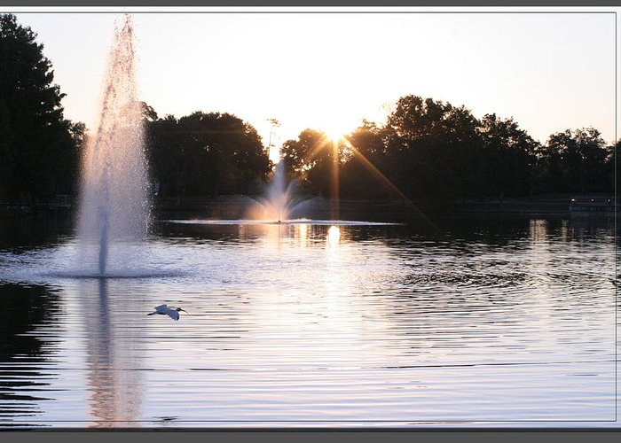 City Center Park Greeting Card featuring the photograph City Center Park Sunrise by Mike Moore