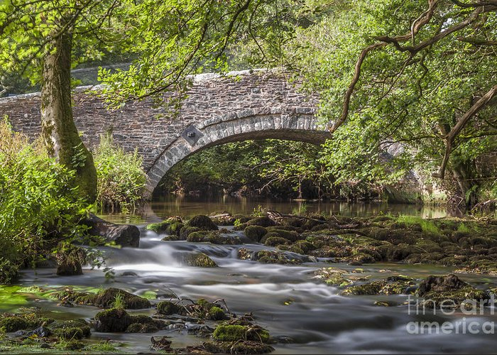 Devon Greeting Card featuring the photograph Clearbrook River Meavy by Donald Davis