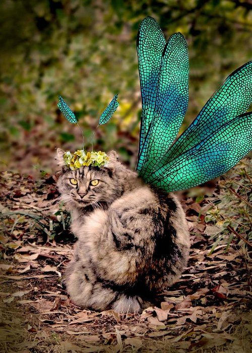 Cat Greeting Card featuring the digital art Clippy's Spring Wings by Kathleen Horner