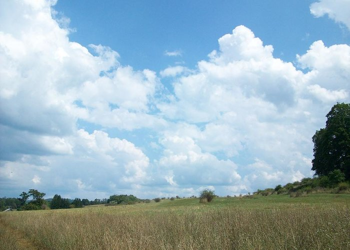 Sky Greeting Card featuring the photograph Cloud Filled Sky by Susan Lane