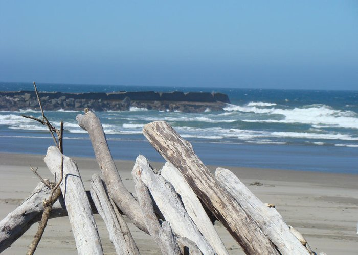 Driftwood Greeting Card featuring the photograph Coastal Driftwood Art Prints Blue Sky Ocean Waves by Baslee Troutman