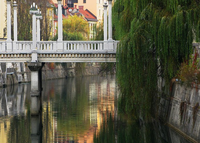 Cobblers Bridge Greeting Card featuring the photograph Cobblers Bridge And Morning Reflections In Ljubljana by Greg Matchick