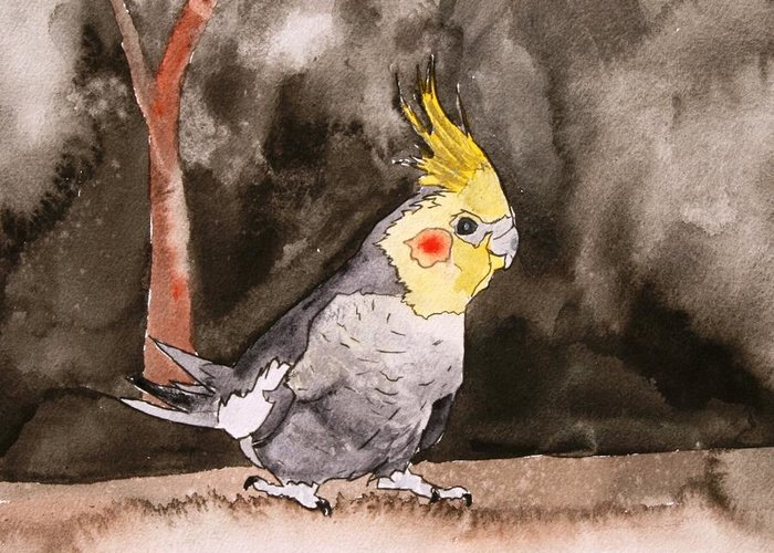 Cockatiel Greeting Card featuring the painting Cockatiel by Derek Mccrea