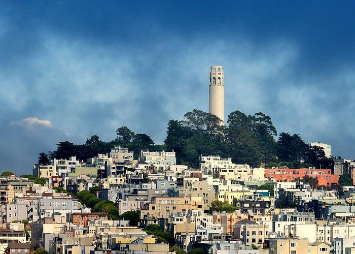 Coit Tower Greeting Card featuring the photograph Coit Tower San Francisco by Pamela Rose Hawken