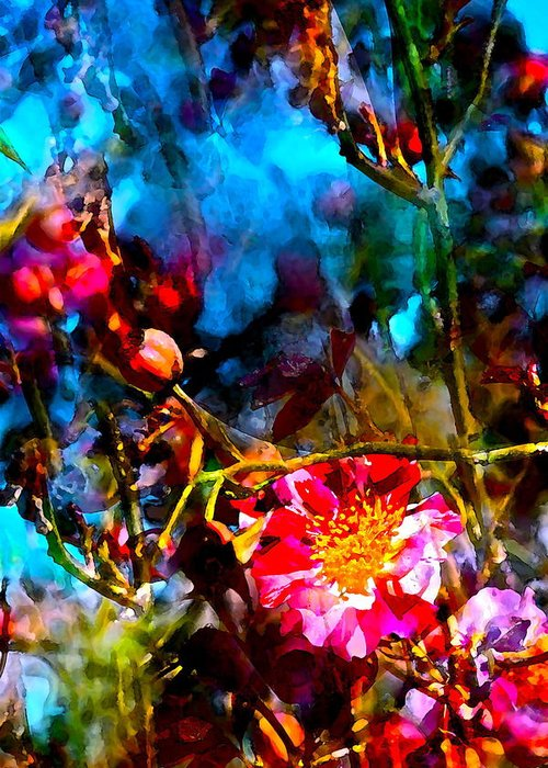 Floral Greeting Card featuring the photograph Color 91 by Pamela Cooper