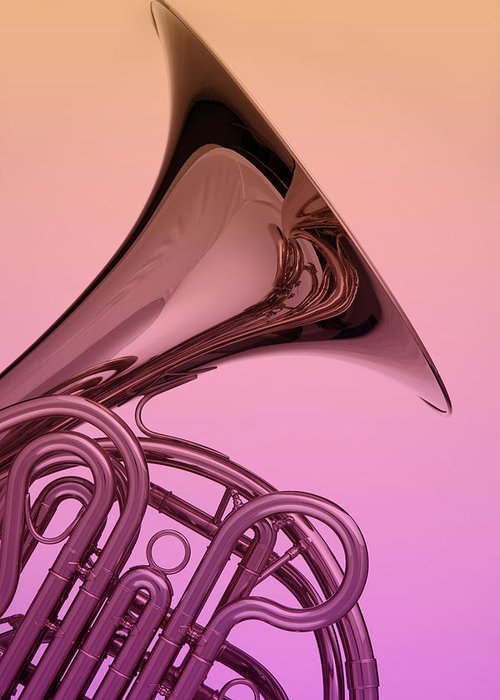 French Horn Greeting Card featuring the photograph Color French Horn by M K Miller