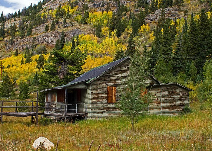 Aspen Greeting Card featuring the photograph Colorado Autumn by Farol Tomson