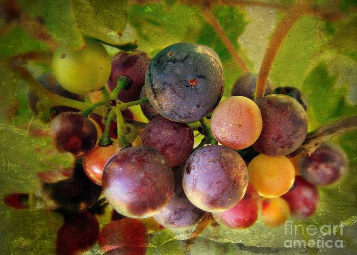Wine Greeting Card featuring the photograph Colors Of Wine by Kevin Moore