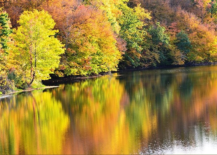 Fall Greeting Card featuring the photograph Colorwash On The Pond by Kim Hymes