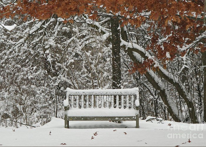 Fine Art Greeting Card featuring the photograph Come Sit Awhile by Inspired Nature Photography Fine Art Photography