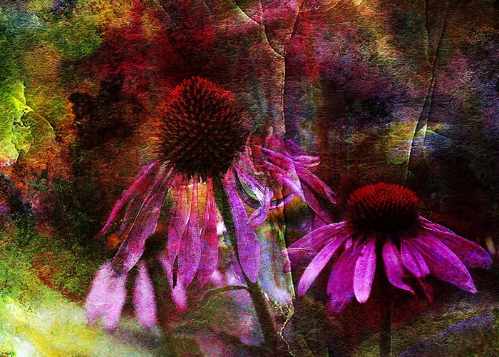J Larry Walker Greeting Card featuring the photograph Cone Flower Beauties by J Larry Walker