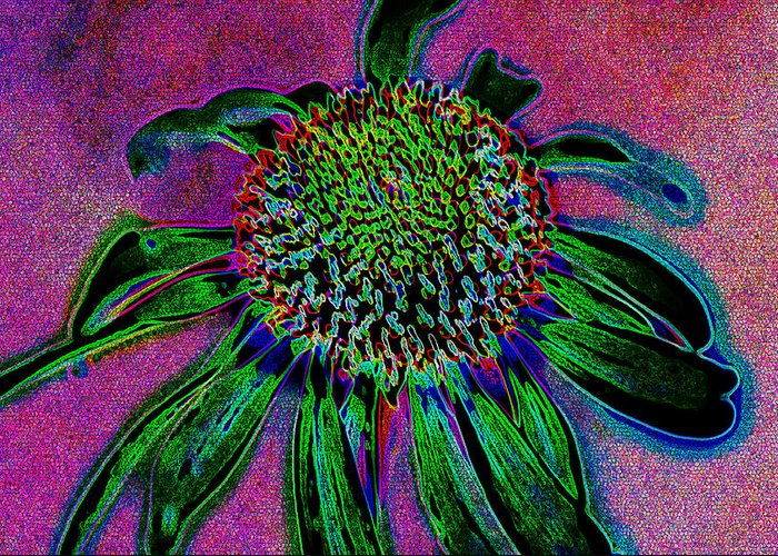 Abstract Greeting Card featuring the photograph Coneflower by Simone Hester