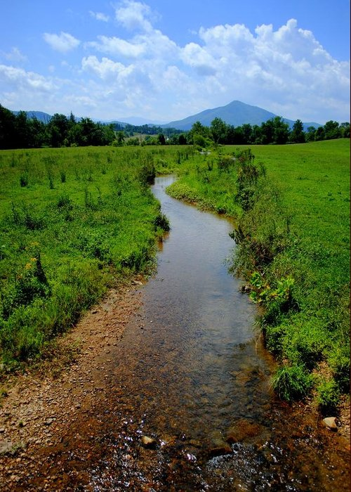 Stream Greeting Card featuring the photograph Cool Mountain Stream by Frozen in Time Fine Art Photography