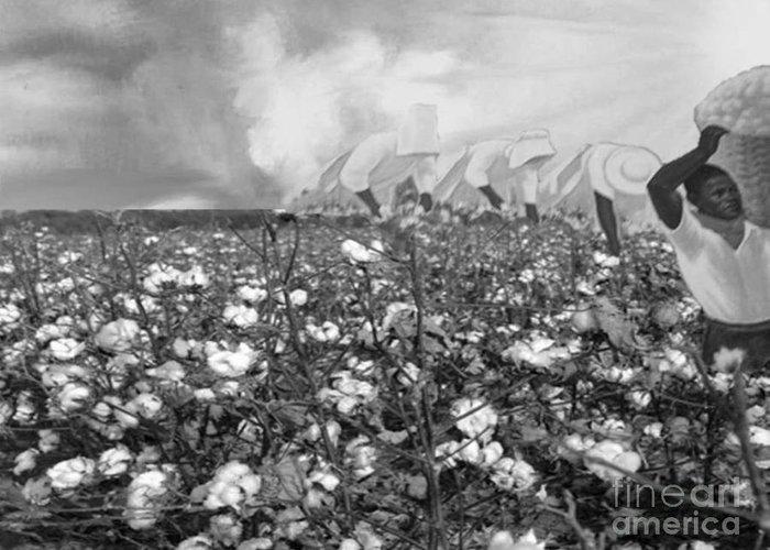 Black History Greeting Card featuring the digital art Cotton Field by Belinda Threeths