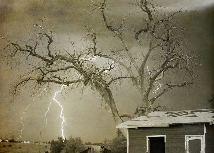 Country Greeting Card featuring the photograph Country Horses Lightning Storm Ne Boulder Co 66v Bw Art by James BO Insogna