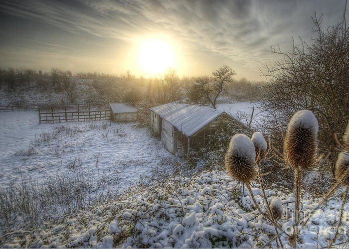 Yhun Suarez Greeting Card featuring the photograph Country Snow And Sunrise by Yhun Suarez