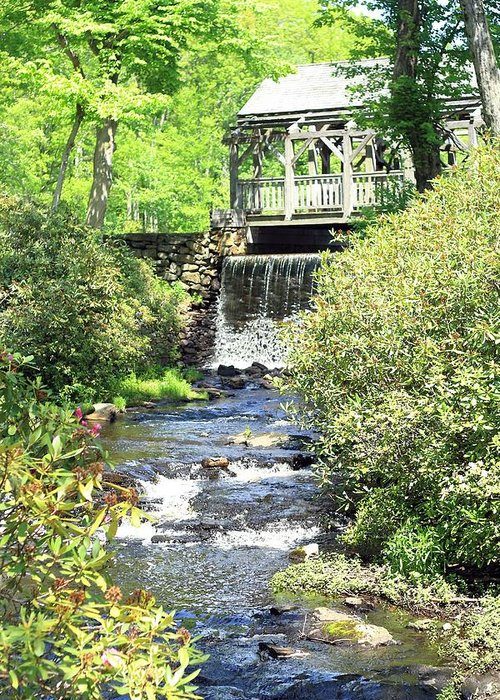 Water Greeting Card featuring the photograph Covered Bridge by Sara Walsh