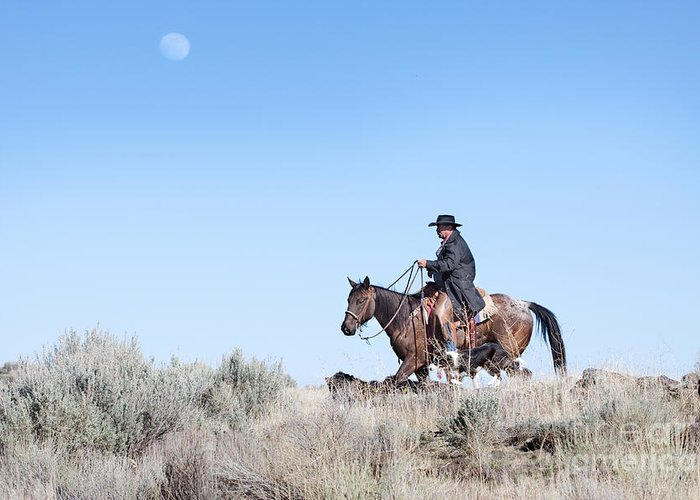 Cowboy Greeting Card featuring the photograph Cowboy Desert Moon by Cindy Singleton
