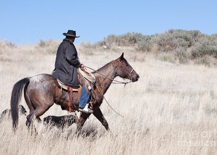 Cowboy Greeting Card featuring the photograph Cowboy On Horseback by Cindy Singleton