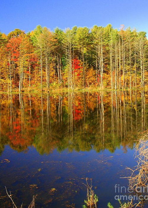 Fall Greeting Card featuring the photograph Coxsackie Reflection by Mark Gilman