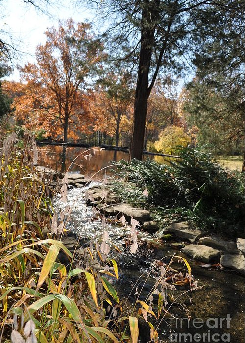 Cheekwood Gardens Greeting Card featuring the photograph Creek by Denise Ellis