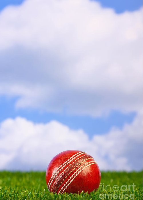 Cricket Ball Greeting Card featuring the photograph Cricket Ball On Grass by Richard Thomas