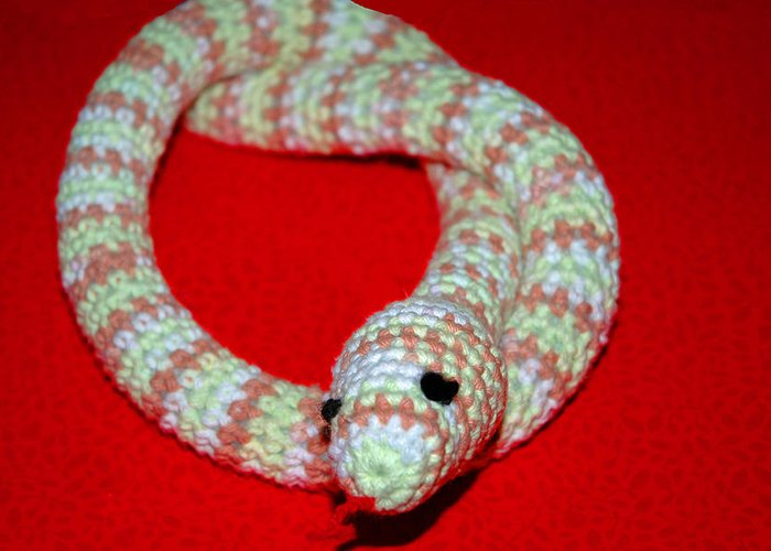 Usa Greeting Card featuring the photograph Crochet Snake In Red by LeeAnn McLaneGoetz McLaneGoetzStudioLLCcom