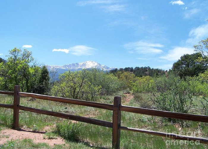 Colorado Greeting Card featuring the photograph Crossing The Fence by Jack Norton